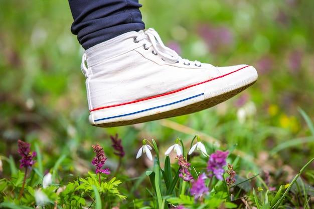 De voet van een vrouw schoenen stapt op zeldzame bloemen in nationaal park, botanische tuin, schade aan de natuur, milieuconcept