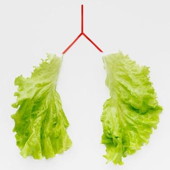 De vorm van de longen met groene salade