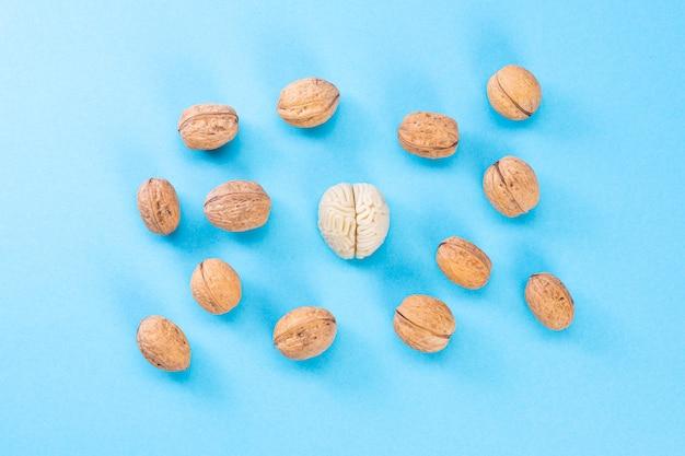 De vorm van het menselijk brein is omgeven door walnootpitten. dit symboliseert de gelijkenis van de hersenen met walnoten en de bewezen effectiviteit als gezond voedsel voor de hersenen.