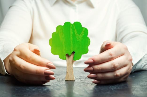 De vrouw beschermt een miniatuur groene boom.