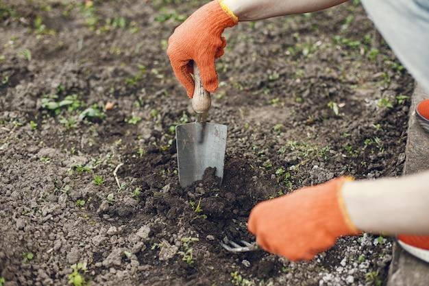 De vrouw dient handschoenen in die jonge plant planten