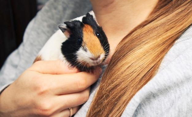 Close-up beeld van schattig klein meisje met een hamster | Gratis Foto
