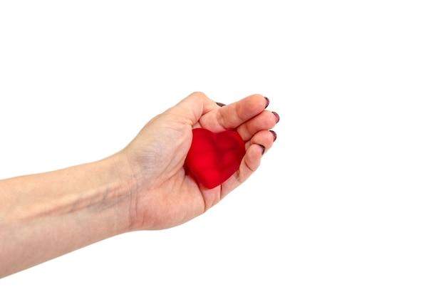 De vrouw houdt een rode haard vast. vrouw handen. bovenaanzicht. valentijn concept.