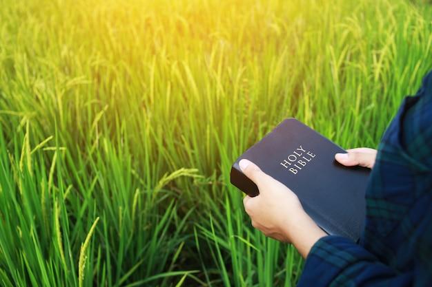 De vrouw leest de bijbel.