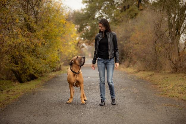 De vrouw van yong met het grote ras van hondfila brasileiro in de herfstpark