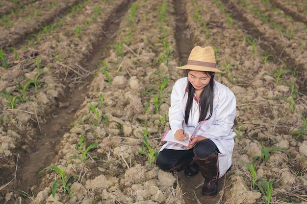 De vrouwelijke arts onderzoekt de bodem met een modern conceptboek.