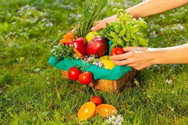 De vrouwelijke handen die rieten mand met groenten en vruchten houden, sluiten omhoog