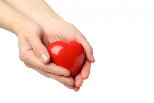 De vrouwelijke handen houden hart, dat op witte ruimte wordt geïsoleerd