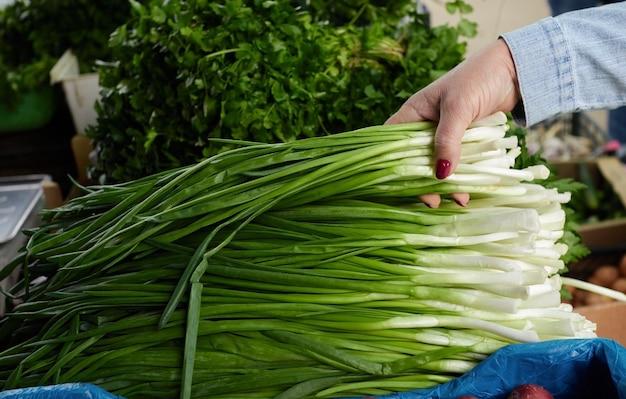 De vrouwenhand kiest groene verse ui in organische markt concept gezond voedsel bio vegetarisch dieet