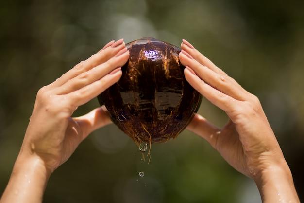 De vrouwenhand trok kokosnoot van water terug. jungle groen