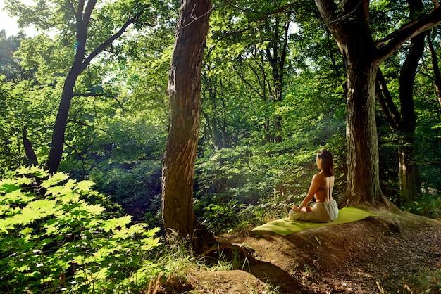 De vrouwenzitting in yoga stelt in bos