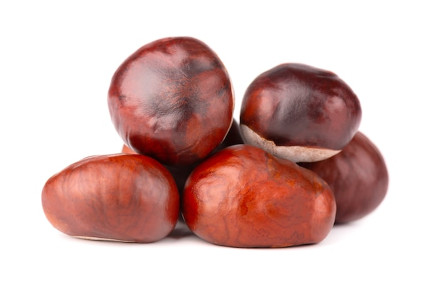 De vruchten van paardekastanjes, die op wit worden geïsoleerd