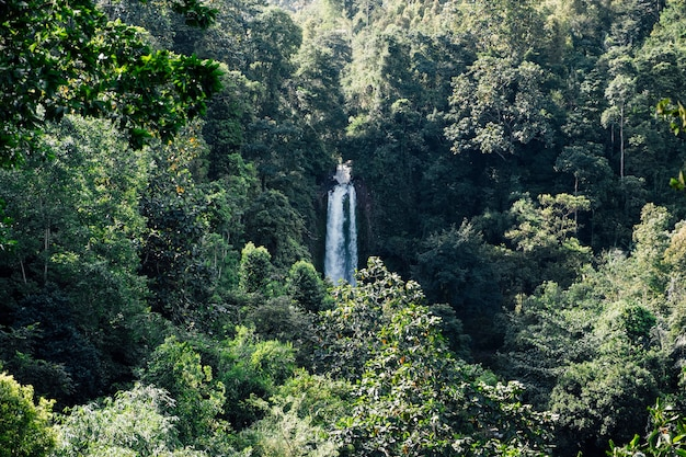 De waterval van bali, indonesië