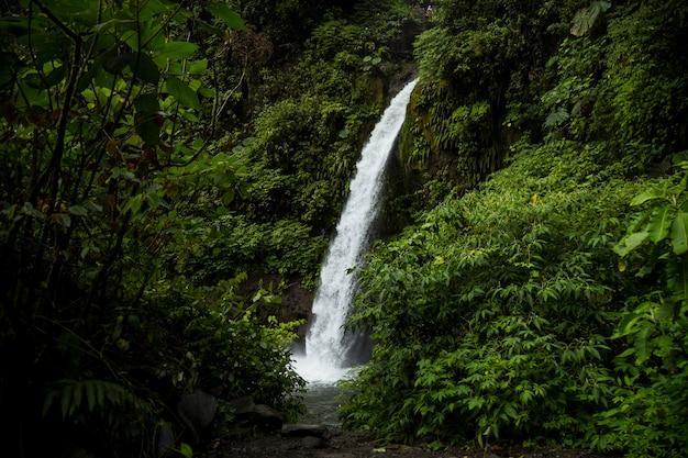 De waterval van la fortuna in een bos in costa rica