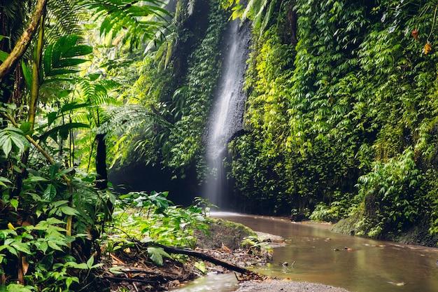 De waterval van tukadcepung in bali, indonesië
