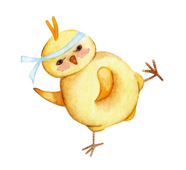 De waterverfillustratie van grappige gele kip zal karate huilen. haanvechter met een verband op zijn hoofd. geïsoleerd op een witte achtergrond. met de hand getekend.