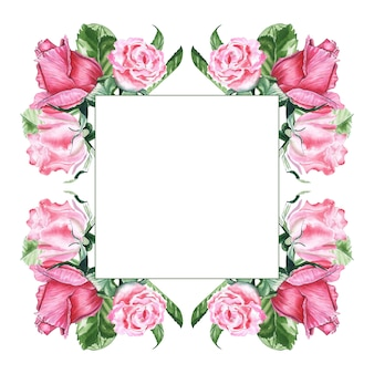 De waterverftekening van de illustratie van roze rozen in het frame