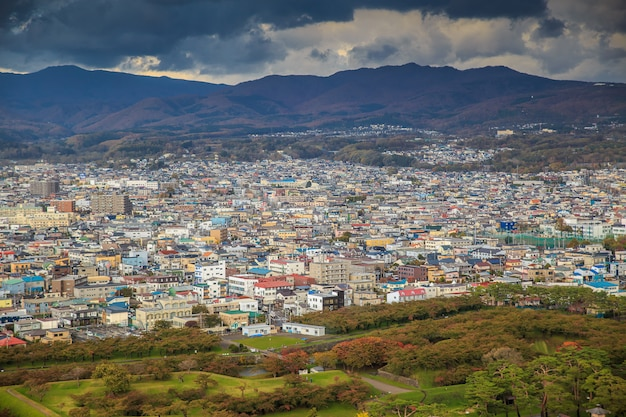 De weergave van hakodate stad vanaf de top van goryokaku tower.