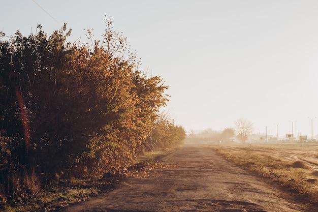 De weg die door het platteland leidt. vroege zonnige ochtend. uitzicht vanuit de auto.