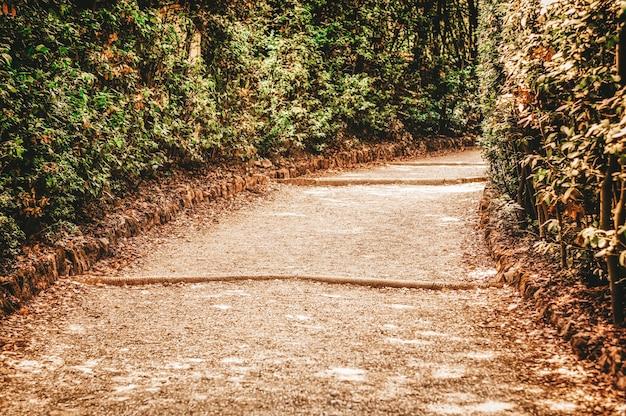 De weg in de boboli-tuinen. italië, florence.