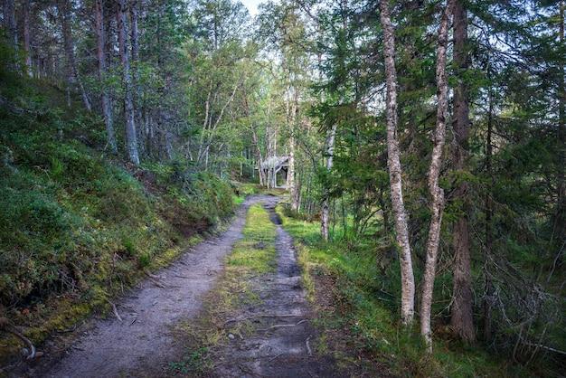De weg naar de bron bij de holy trinity skete op anzer island solovetsky islands onder