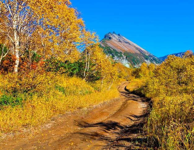 De weg naar de vulkaan door het bos