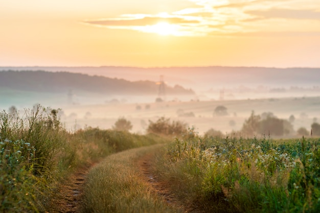 De weg van het grintplatteland op zonsopgang zacht licht