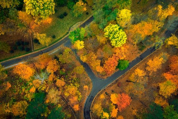 De weide is omgeven door gele en groene bomen, herfstlandschap. drone-weergave.