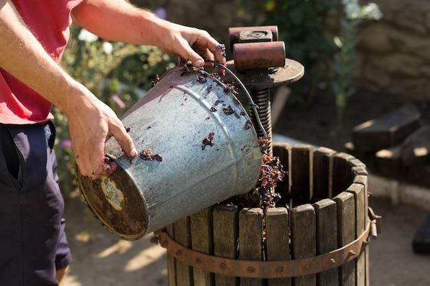 De wijnmaker giet grondstoffen in de pers