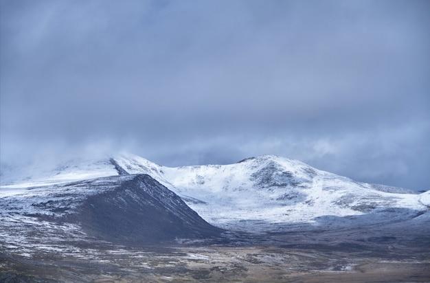 De winter is gekomen om de siberische steppe