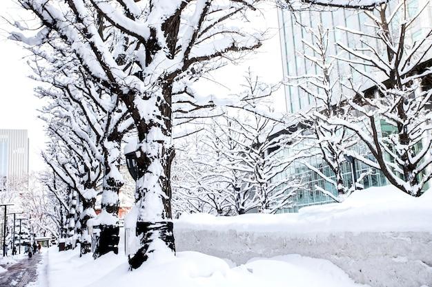 De wintersneeuw in sapporo, hokkaido, japan