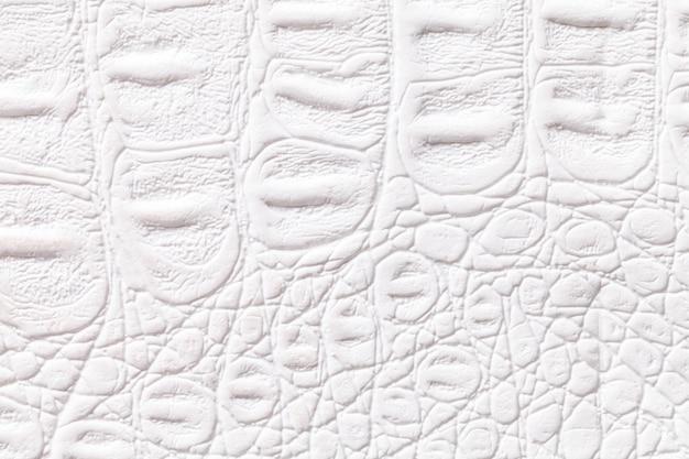 De witte achtergrond van de leertextuur, close-up. reptielenhuid, macro.