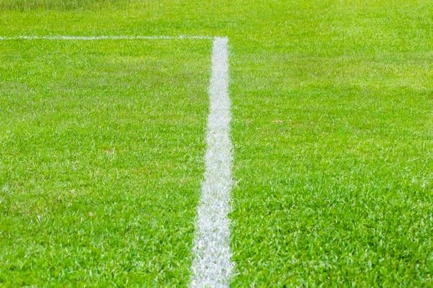 De witte lijn die bestaat uit de grenslijn in het groene gazon.