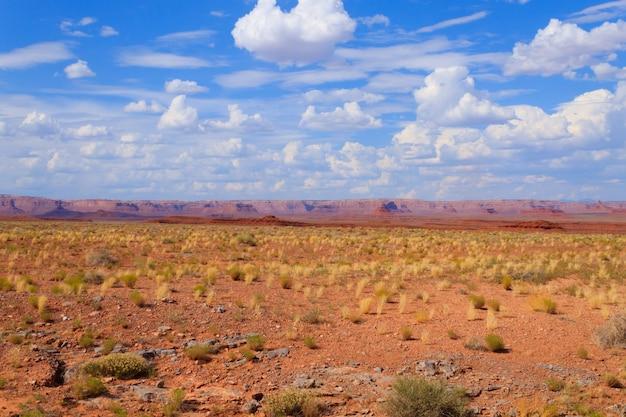 De woestijnpanorama van arizona. gele struik en blauwe hemel met rode bergen op achtergrond. usa landschap
