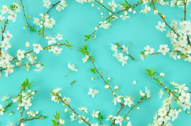 De zomentextuur van takken van de de boomfruit van de de lente de witte bloesem wordt gemaakt op een achtergrond van de pastelkleurmunt