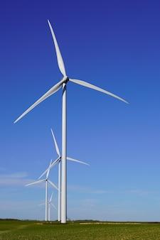 De zomer van het het landbouwbedrijflandschap van de windturbine met de zomer blauwe hemel