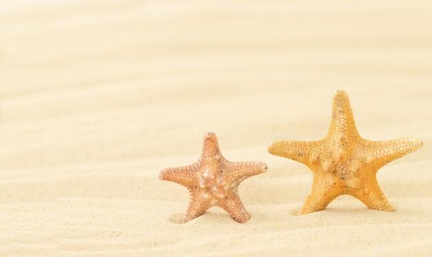 De zomerachtergrond met twee zeesterren op het zand