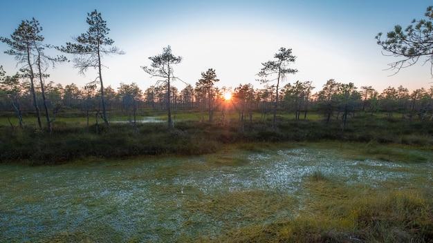 De zon gaat onder aan de horizon in de noordelijke moerassen.