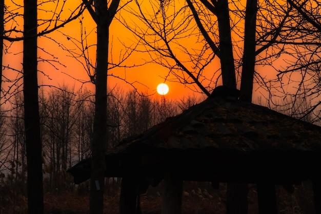 De zonsondergang heeft in de herfst een houten prieel en een boomschaduw als achtergrond.