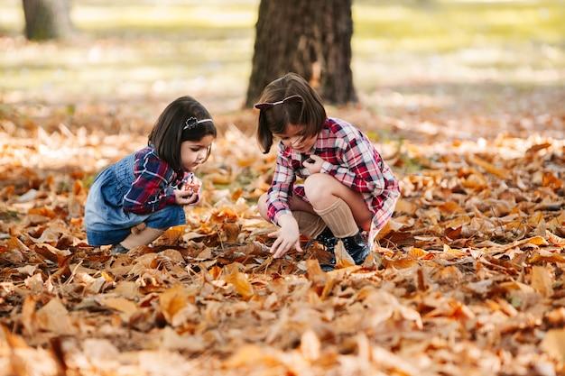 De zusters genieten van bij park in de herfst