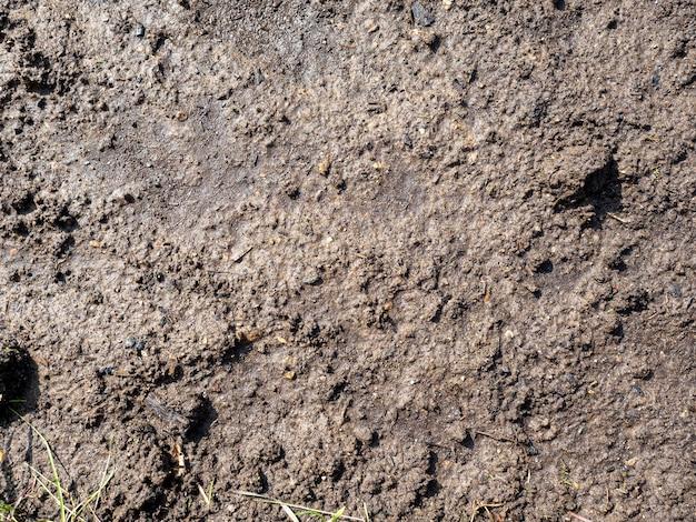 De zwarte aarde voor het planten van planten is nat. bovenaanzicht, plat gelegd. textuur