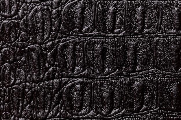 De zwarte achtergrond van de leertextuur, close-up. reptielenhuid, macro.