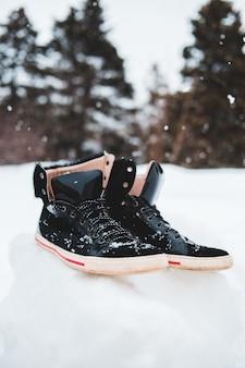 De zwarte en rode schoen van luchtjordanië op sneeuw