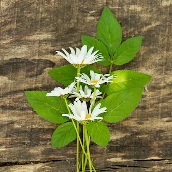 Decor van wilde bloemen op groene bladeren