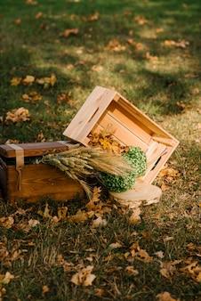 Decor voor huwelijksceremonie, herfst, rustiek, aartjes
