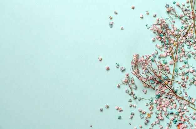 Decoratie met gypsophila bloemen met kopie ruimte op lichtgroene achtergrond