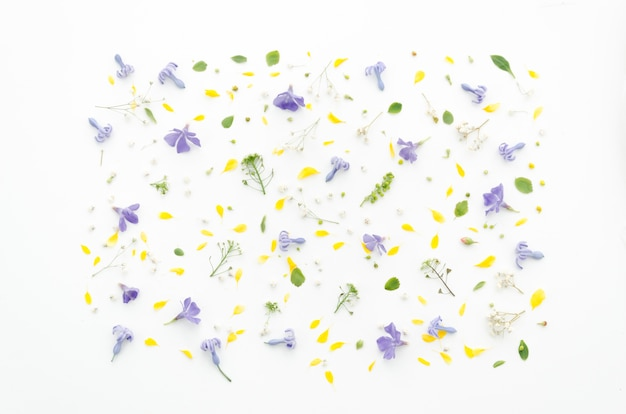 Decoratief bloemenpatroon