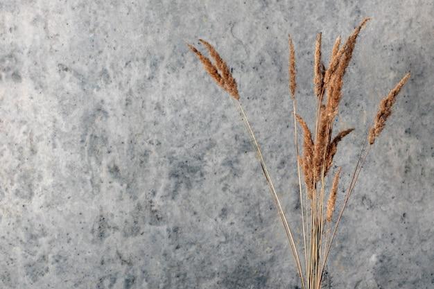 Decoratief droog gras op een muur van een betonnen muur.