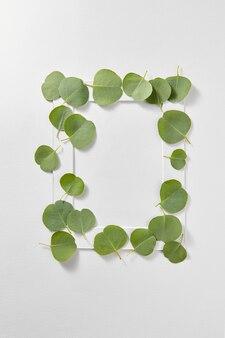Decoratief rechthoekig frame handgemaakt van groenblijvende bladeren van eucalyptusplant op een lichtgrijze muur met kopie ruimte. plat leggen.