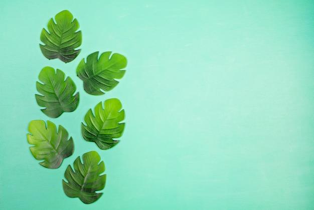 Decoratief tropisch bladeren bovenaanzicht